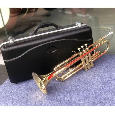 Trumpet Selmer TR-300 màu vàng